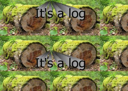 It's a log!