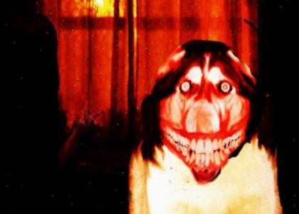 Smiledog is Watching