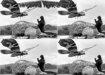 I'm gonna fight a moth!