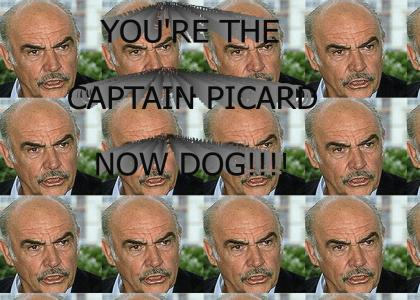 YOU'RE THE CAPTAIN PICARD NOW DOG!!