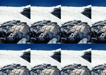 Bones on Everest Rave