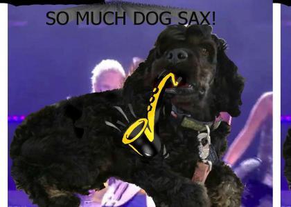 Epic Dog Sax