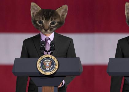 Purrsident of the United States