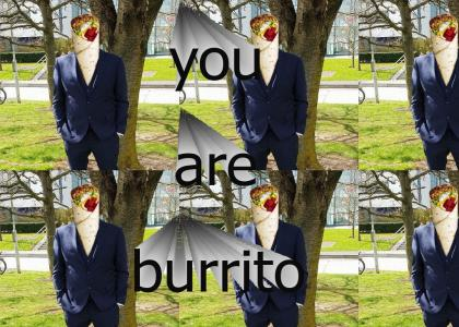 you are a burrito