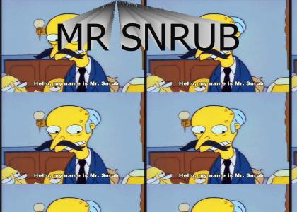 mr snrub