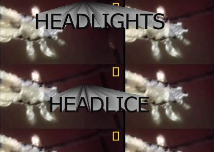 [Vinesauce] Headlights Headlice