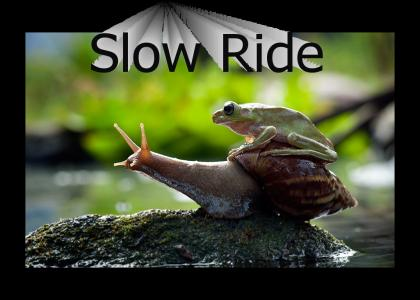 Froggy Slow Ride