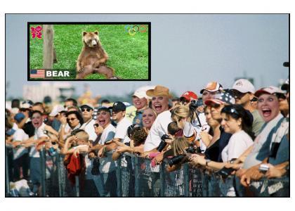 Bearlympics