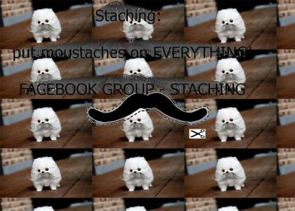 STACHING: PUT MOUSTACHES ON EVERYTHING