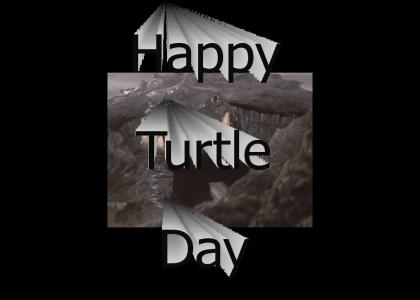 Happy Turtle Day