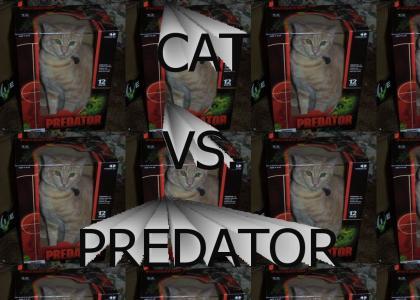 Cat Vs. Predator