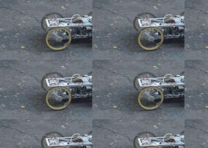 real life Transformer robot
