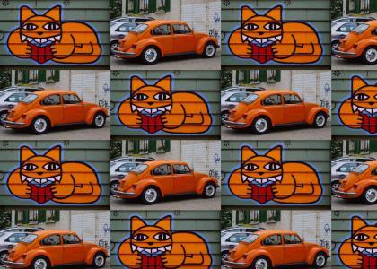 * Car & Cat *