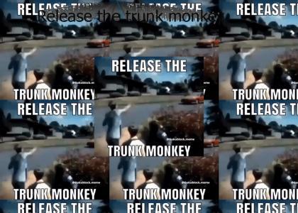 Release the trunk monkey