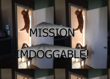 Mission Imdoggable