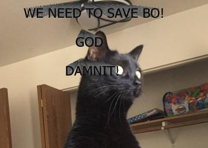 SAVE BO!