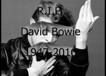 Ten bell salute for David Bowie