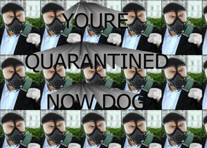 You're Quarantined Now Dog