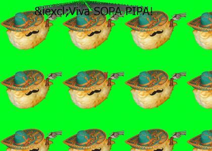 ¡Viva SOPA PIPA!