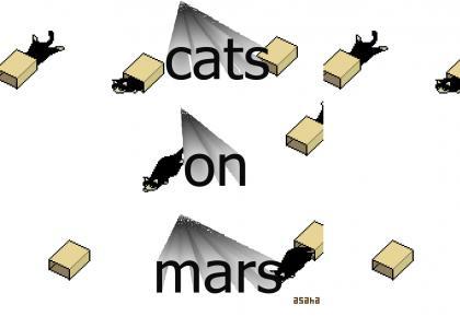 cats on mars 2020