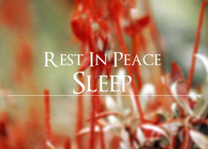 R.I.P. Sleep