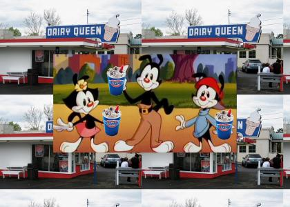 Yakko, Wakko and Dot order DQ blizzards