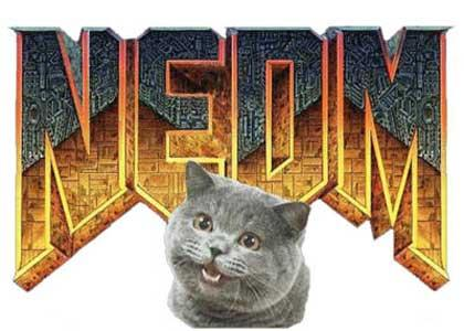 How I feel about NEDM