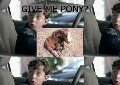 YOU MAY NOT HAVE A PONY