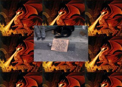 The Homeless Dragonslayer