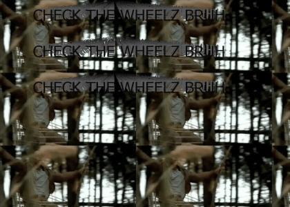"""""""""""CHECK THE WHEELZ BRUH"""""""""""