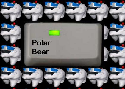 POLAR BEAR IS ON