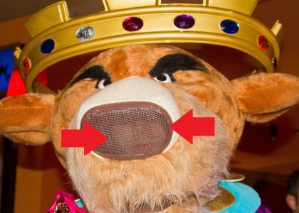 Disneyland Costume Fail