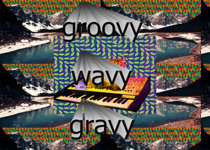 Do the Groovy Wavy Gravy
