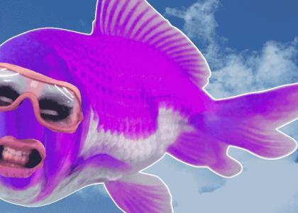 FISH GISH